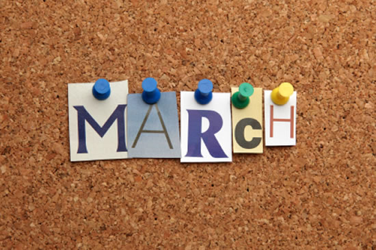 march 2017 library news and events friends of roslindale branch